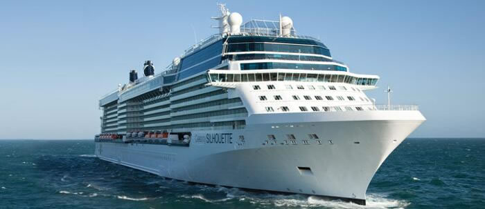 Celebrity's Beautiful Celebrity Silhouette